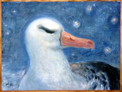 Albatross; 1998.1
