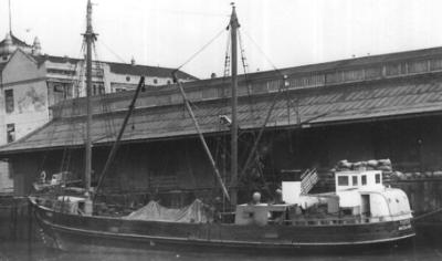 Photograph: The steam launch 'Tuhoe' berthed at Herald Island