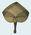 Woven pandanus fan